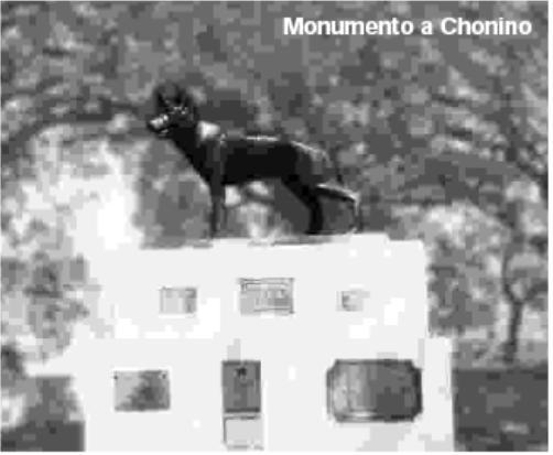 Monumento a CHONINO. Imagen de diariomarca.com.ar