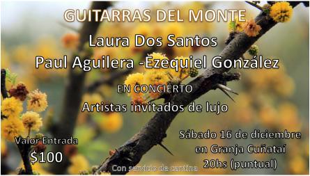 Entrada Concierto Guitarras del Monte (1)